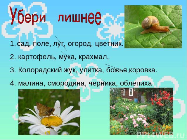 сад, поле, луг, огород, цветник. 2. картофель, мука, крахмал, 3. Колорадский жук, улитка, божья коровка. 4. малина, смородина, черника, облепиха