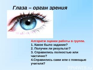 Глаза – орган зрения Алгоритм оценки работы в группе. 1. Какое было задание? 2.