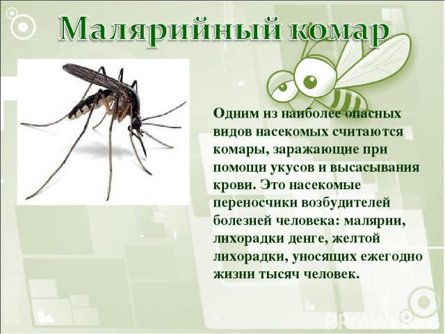 Одним из наиболее опасных видов насекомых считаются комары, заражающие при помощи укусов и высасывания крови. Это насекомые переносчики возбудителей болезней человека: малярии, лихорадки денге, желтой лихорадки, уносящих ежегодно жизни тысяч человек.