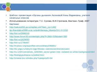 Шаблон: презентация «Органы дыхания» Аксеновой Нины Вадимовны, учителя начальных