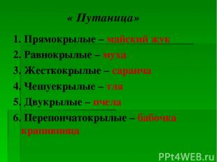 « Путаница» 1. Прямокрылые – майский жук 2. Равнокрылые – муха 3. Жесткокрылые –