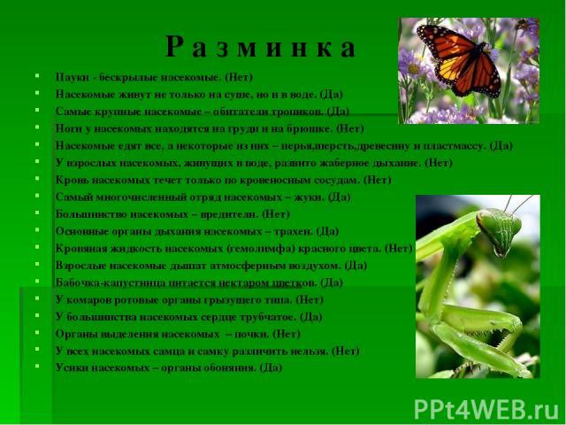 Р а з м и н к а Пауки - бескрылые насекомые. (Нет) Насекомые живут не только на суше, но и в воде. (Да) Самые крупные насекомые – обитатели тропиков. (Да) Ноги у насекомых находятся на груди и на брюшке. (Нет) Насекомые едят все, а некоторые из них …