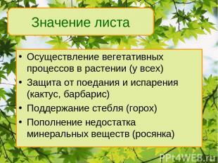 Осуществление вегетативных процессов в растении (у всех) Защита от поедания и ис