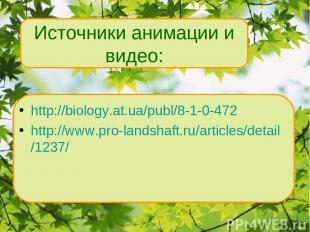 http://biology.at.ua/publ/8-1-0-472 http://www.pro-landshaft.ru/articles/detail/