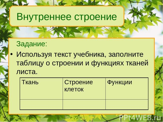 Задание: Используя текст учебника, заполните таблицу о строении и функциях тканей листа. Внутреннее строение Ткань Строение клеток Функции