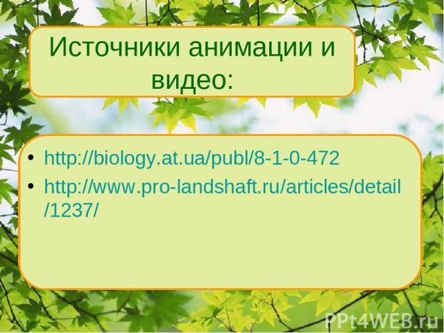 http://biology.at.ua/publ/8-1-0-472 http://www.pro-landshaft.ru/articles/detail/1237/ Источники анимации и видео:
