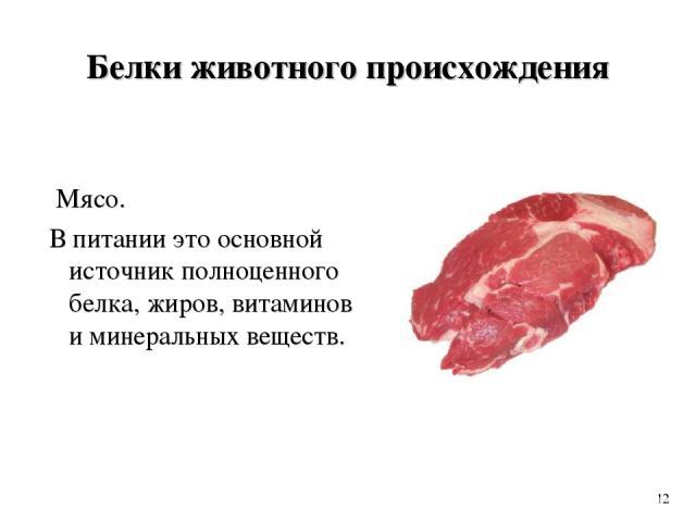 Белки животного происхождения Мясо. В питании это основной источник полноценного белка, жиров, витаминов и минеральных веществ. 12