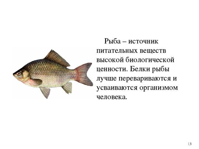 Рыба – источник питательных веществ высокой биологической ценности. Белки рыбы лучше перевариваются и усваиваются организмом человека. 13