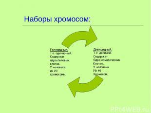 Наборы хромосом: