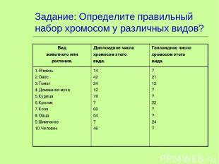 Задание: Определите правильный набор хромосом у различных видов? Вид животного и