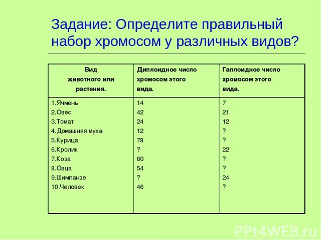 Задание: Определите правильный набор хромосом у различных видов? Вид животного или растения. Диплоидное число хромосом этого вида. Гаплоидное число хромосом этого вида. 1.Ячмень 2.Овёс 3.Томат 4.Домашняя муха 5.Курица 6.Кролик 7.Коза 8.Овца 9.Шимпан…