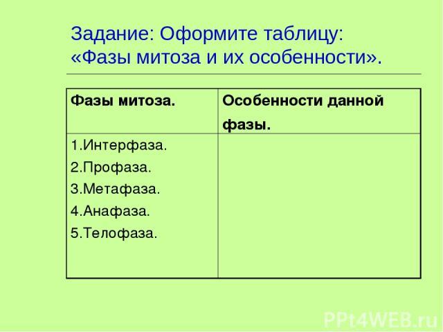 Задание: Оформите таблицу: «Фазы митоза и их особенности». Фазы митоза. Особенности данной фазы. 1.Интерфаза. 2.Профаза. 3.Метафаза. 4.Анафаза. 5.Телофаза.