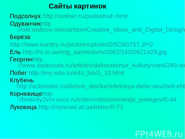 Подсолнух http://askher.ru/podsolnuh.html Одуванчикhttp://old.wallcoo.net/cartoon/Creative_Ideas_and_Digital_Design_1920x1200/html/wallpaper3.html Берёза http://www.kandry.ru/pictures/photo/DSCN0757.JPG Ель http://m.io.ua/img_aa/medium/2062/14/20621…