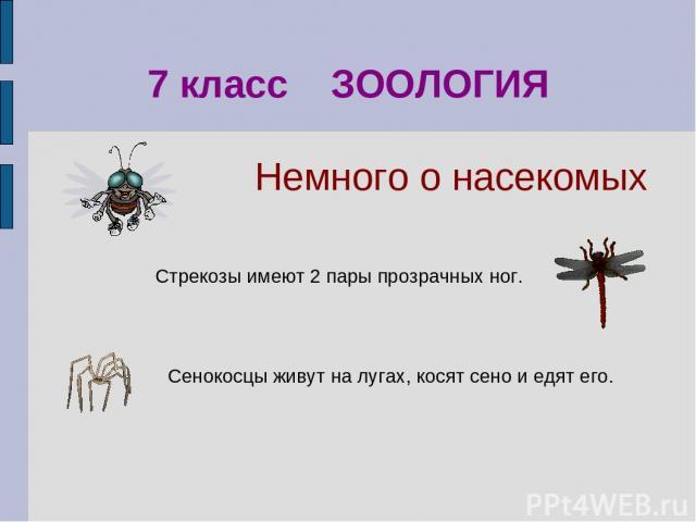 Сенокосцы живут на лугах, косят сено и едят его. 7 класс ЗООЛОГИЯ Стрекозы имеют 2 пары прозрачных ног. Немного о насекомых