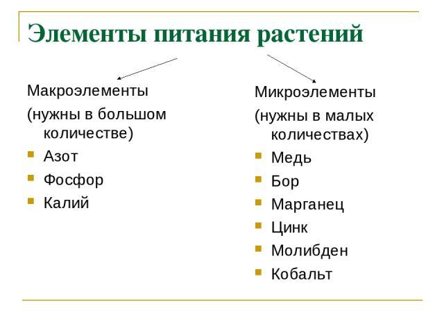 Элементы питания растений Макроэлементы (нужны в большом количестве) Азот Фосфор Калий Микроэлементы (нужны в малых количествах) Медь Бор Марганец Цинк Молибден Кобальт