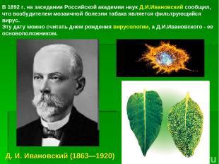 а я В 1892 г. на заседании Российской академии наук Д.И.Ивановский сообщил, что