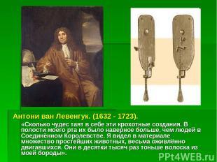 Антони ван Левенгук. (1632 - 1723). «Сколько чудес таят в себе эти крохотные соз