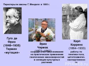 Гуго де Фриз (1848–1935) Термин «мутация» сосредоточил свое внимание на практиче