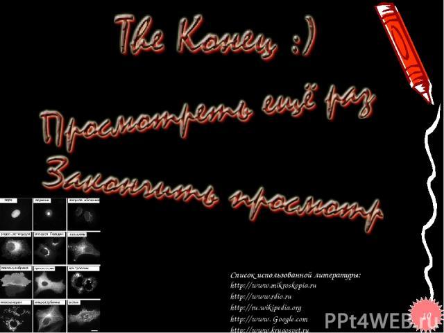 Список использованной литературы: http://www.mikroskopia.ru http://www.rdio.ru http://ru.wikipedia.org http://www. Google.соm http://www.krugosvet.ru 10