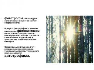 фототрофы синтезируют органические вещества за счёт энергии света; Процесс фотот