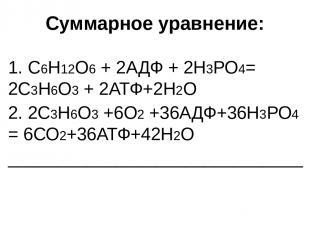 Окисление ПВК при аэробном дыхании происходит в: хлоропластах цитоплазме матрикс