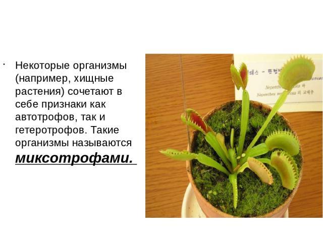 Некоторые организмы (например, хищные растения) сочетают в себе признаки как автотрофов, так и гетеротрофов. Такие организмы называются миксотрофами.