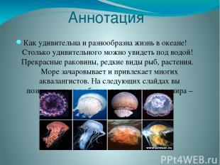 Аннотация Как удивительна и разнообразна жизнь в океане! Столько удивительного м