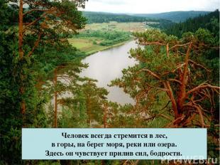 Человек всегда стремится в лес, в горы, на берег моря, реки или озера. Здесь он