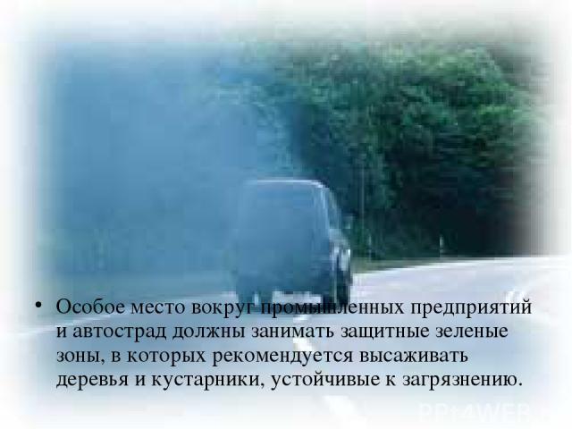 Особое место вокруг промышленных предприятий и автострад должны занимать защитные зеленые зоны, в которых рекомендуется высаживать деревья и кустарники, устойчивые к загрязнению.