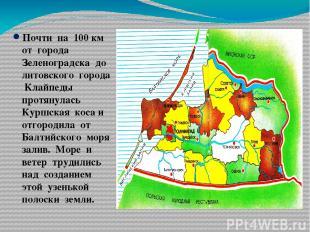 Почти на 100 км от города Зеленоградска до литовского города Клайпеды протянулас