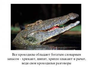 Все крокодилы обладают богатым словарным запасом - хрюкают, шипят, хрипло квакаю