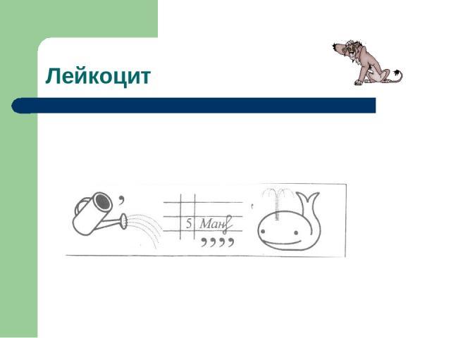 Лейкоцит