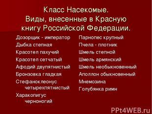 Класс Насекомые. Виды, внесенные в Красную книгу Российской Федерации. Дозорщик