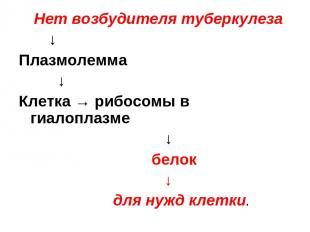 Нет возбудителя туберкулеза ↓ Плазмолемма ↓ Клетка → рибосомы в гиалоплазме ↓ бе