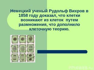 Немецкий ученый Рудольф Вихров в 1858 году доказал, что клетки возникают из клет