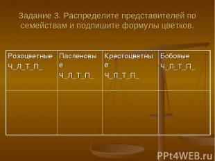 Задание 3. Распределите представителей по семействам и подпишите формулы цветков