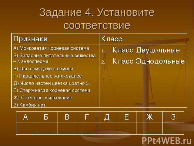 Задание 4. Установите соответствие