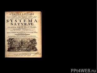 Главные научные труды: 1736 год – «Система природы» Титульный лист книги «Систем
