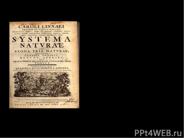 Главные научные труды: 1736 год – «Система природы» Титульный лист книги «Система природы» 1738 год – «Классификация растений»