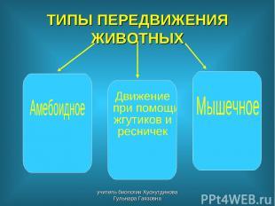 ТИПЫ ПЕРЕДВИЖЕНИЯ ЖИВОТНЫХ учитель биологии Хуснутдинова Гульнара Гаязовна учите