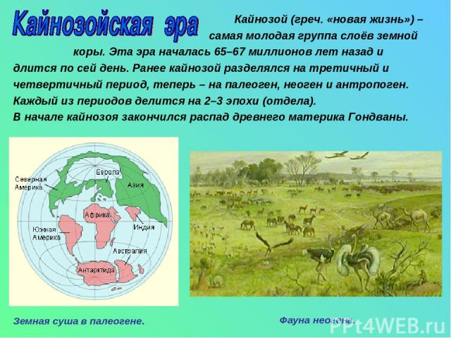 Кайнозой (греч. «новая жизнь») – самая молодая группа слоёв земной коры. Эта эра началась 65–67 миллионов лет назад и длится по сей день. Ранее кайнозой разделялся на третичный и четвертичный период, теперь – на палеоген, неоген и антропоген. Каждый…