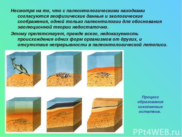 Несмотря на то, что с палеонтологическими находками согласуются геофизические данные и экологические соображения, одной только палеонтологии для обоснования эволюционной теории недостаточно. Этому препятствует, прежде всего, недоказуемость происхожд…