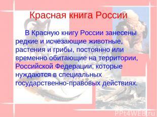 Красная книга России В Красную книгу России занесены редкие и исчезающие животны