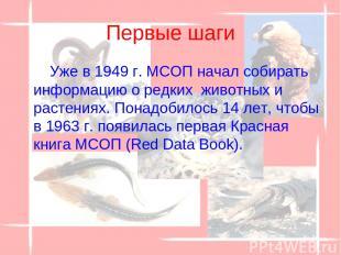 Первые шаги Уже в 1949 г. МСОП начал собирать информацию о редких животных и ра