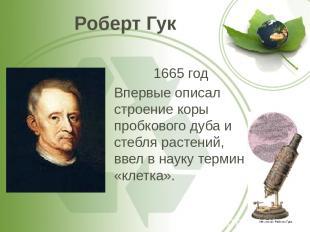 Роберт Гук 1665 год Впервые описал строение коры пробкового дуба и стебля растен