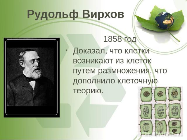 Рудольф Вирхов 1858 год Доказал, что клетки возникают из клеток путем размножения, что дополнило клеточную теорию.