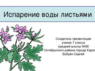 Испарение воды листьями Создатель презентации ученик 7 класса средней школы №85