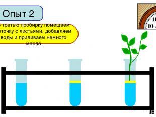 Опыт 2 В первую пробирку добавим немного воды Во вторую пробирку добавим воды и