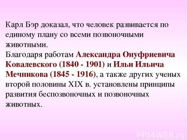 Карл Бэр доказал, что человек развивается по единому плану со всеми позвоночными животными. Благодаря работам Александра Онуфриевича Ковалевского (1840 - 1901) и Ильи Ильича Мечникова (1845 - 1916), а также других ученых второй половины ХIХ в. устан…