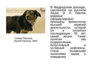 В Мадридском докладе, сделанном на русском языке, И. П. Павлов впервые сформулир